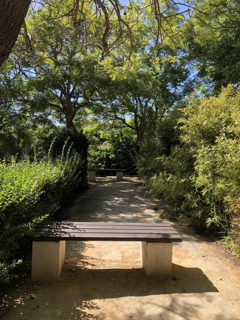 park v centre goroda